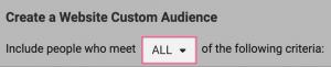 cfreate a website custom audience